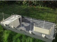Large rabbit/Guinea pig indoor cage