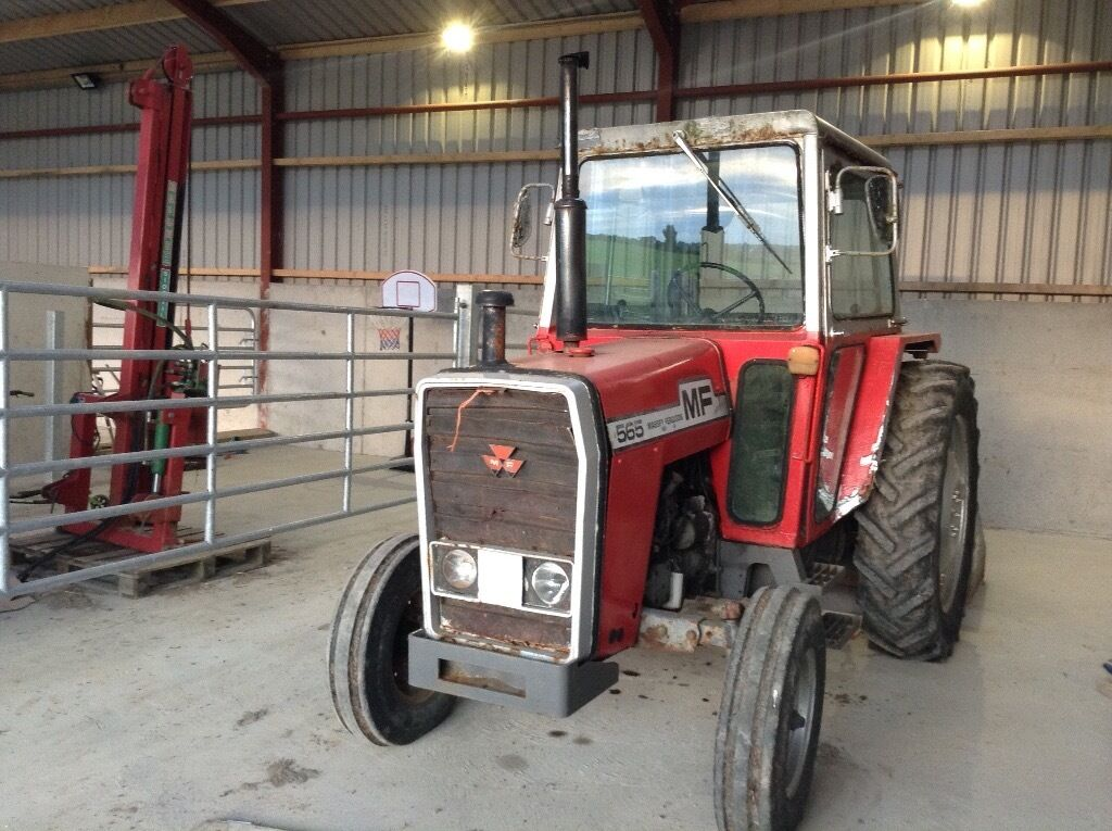 Mf 565 Tractor Massey Ferguson In Portaferry County