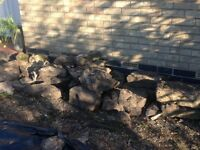 York Stone - Used, ideal for a rockery. Approximately 120 stones, various sizes.