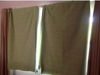 NEXT curtains- green with little flowers