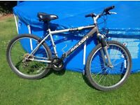 RALEIGH BIKE NOT BEING USED SELLING FOR £17.50 ono