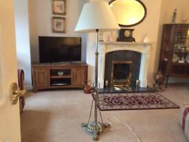 Antique Solid Brass Standard Lamp