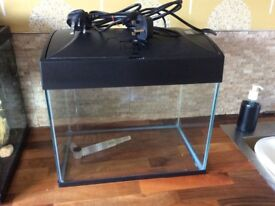 Fish tank only 6 months old complete with light/filter