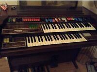 fender amp Thomas organ