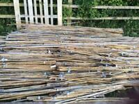 8ft garden canes