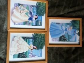 Trio of Disney princess pictures