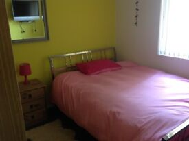 Room to rent in Harborne- close to QE Hospital, University and High Street
