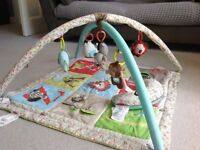 Skip and hop animal baby play mat