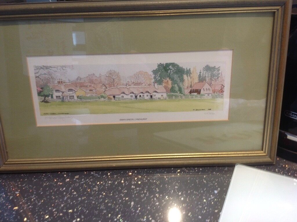 Watercolours of Swangreen lyndhurst.
