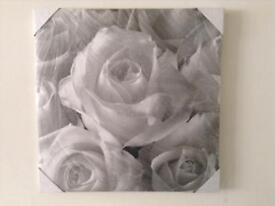 Grey & White Canvas Picture