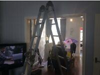 Multi function ladders