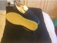 Superdry Canvas Shoes £20