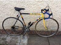 Raleigh Banana Road Bike