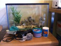 Fish Tank - Ideal for Goldfish