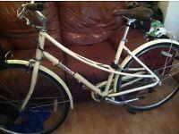 Hybrid pinnacle ladies bike