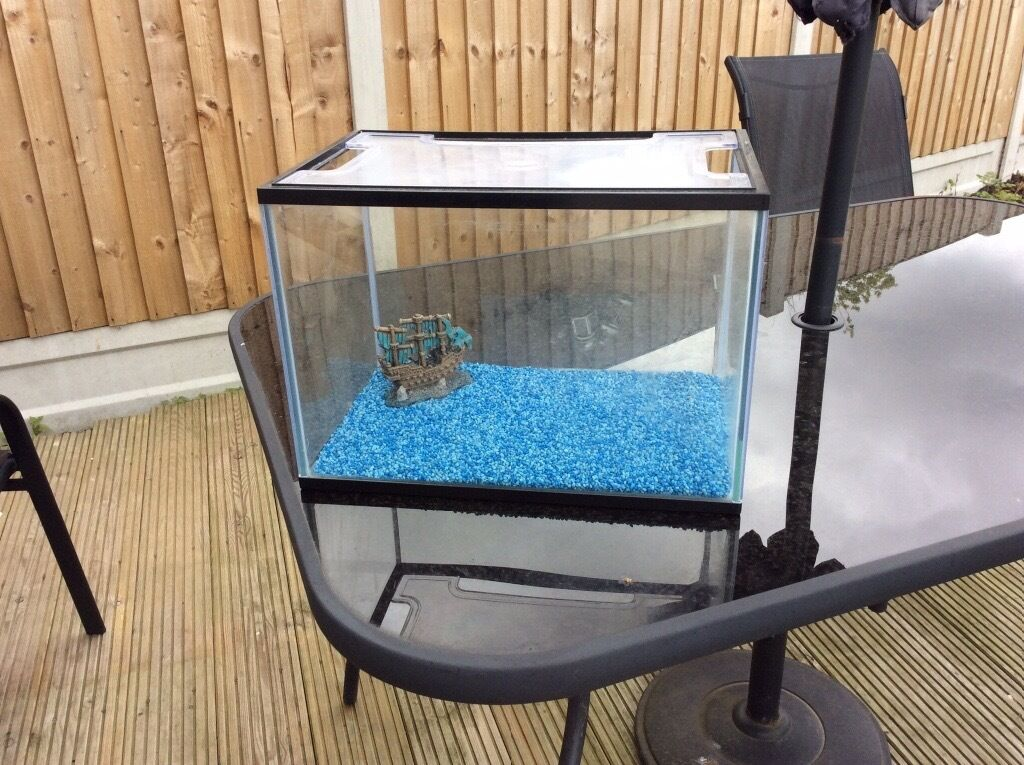Small fish tank 20 litre with accessories in basildon for Aquarium boule 20 litres