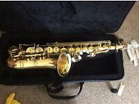 Alto saxophone in case.