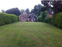 Double room to let in four marks Alton Hampshire