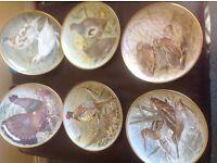 Games Birds of the World decorative porcelain plates