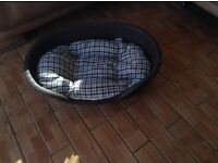 Plastic dog bed with cushion never used brand new