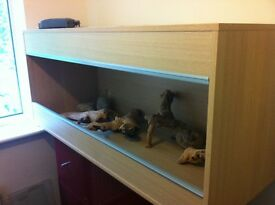 4ft Vivarium for sale.