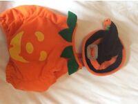 Halloween pumpkin costum