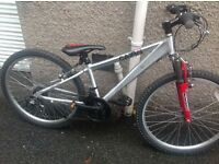 Revolution cairn bike
