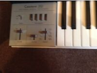 VINTAGE CASIO 202 SYNTH KEYBOARD FROM 1981 4 OCTAVE FULL SIZE KEYS SUSTAIN VIBRATO etc