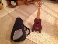 Ukelele with padded case and stand