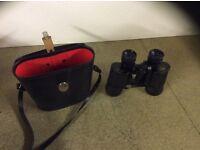 Viking binoculars
