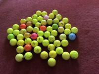 62 coloured golf balls for sale