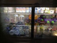 Cold drinks fridge hardly used. Not needed anymore 250 or near offer no time wasters please