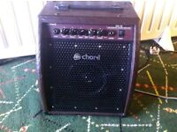 guitar.keyboard amplifier/ combo