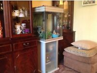 Large Aquarium with stand for goldfish or Tropical fish