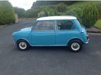 Wanted Classic Mini