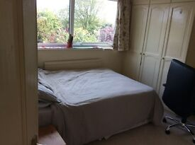 Double room to let in luxurious shared house near to UEA for professional/student