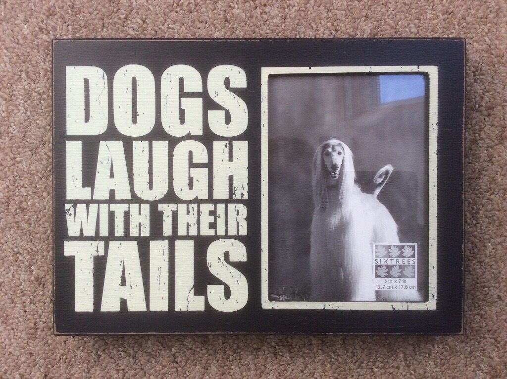 Dog Picture Quote Frame Perfect Christmas Gift For Those Dog Lovers