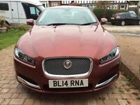 Jaguar XF 2014,premium luxury,Auto