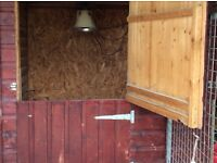 Kennel or small animal building , bespoke built with galvanised runs