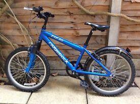 Ridgeback MX20 children's bike