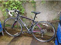 Ladies Road Bike- Trek Lexa SL (2014)
