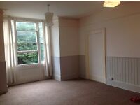 Lovely Large bright room for single person