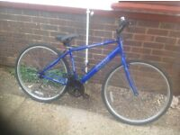 Adults XC10 HY Brid Cycle 18 speed