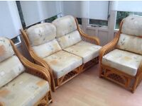 Comfortable cane seats for garden or conservatory