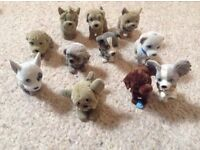 Puppy in my Pocket collection