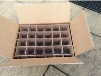 Brand New box of 24 x Carling pint glasses