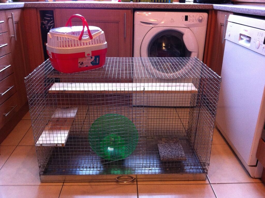large degu   rat or rodent cage   with pet carrier running disc rope large degu   rat or rodent cage   with pet carrier running disc      rh   gumtree