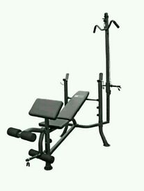 Pro Fitness Lat and Curl Bench (brand New & Flatpacked) RRP £99.99