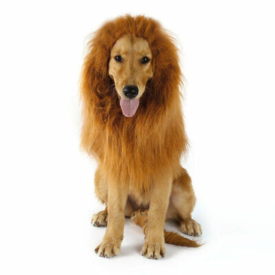 Pet Costume Dog Lion Wigs Mane Hair Scarf Clothes Festival Party Halloween GC