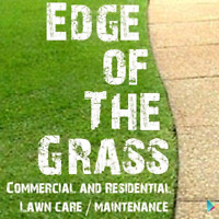 Edge of the grass